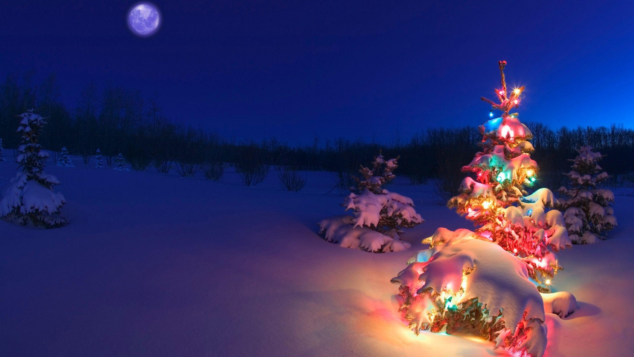 обои на рабочий стол 1920х1080 зима новый год рождество № 199428 бесплатно